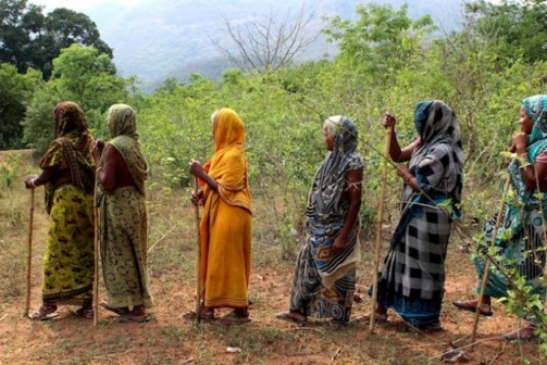 Women from the Gunduribadi tribal village in the eastern Indian state of Odisha patrol their forests with sticks to prevent illegal logging. Credit: Manipadma Jena/IPS