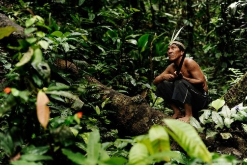 This hunter is a member of the Waorani community, an Amazonian indigenous people who live in eastern Ecuador. Credit: Courtesy Nicolas Villaume, Land is Life