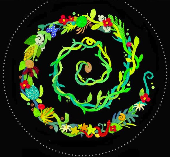 espiral solo